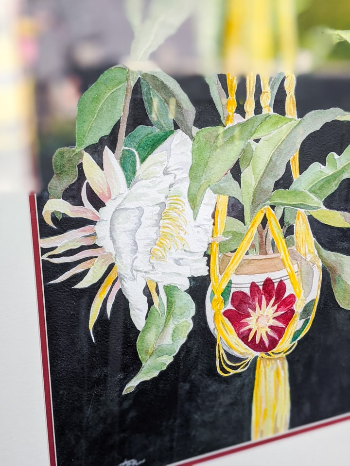 painting of Epiphyllum Oxypetalum flowering