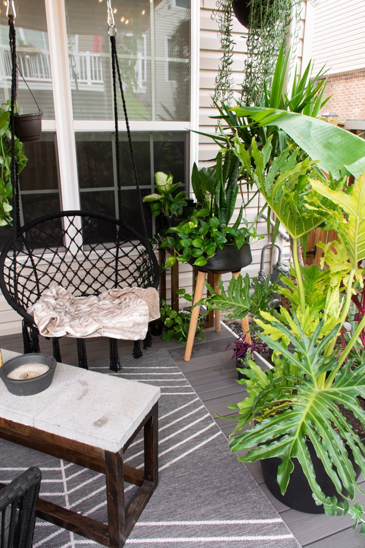 outdoor space with plants