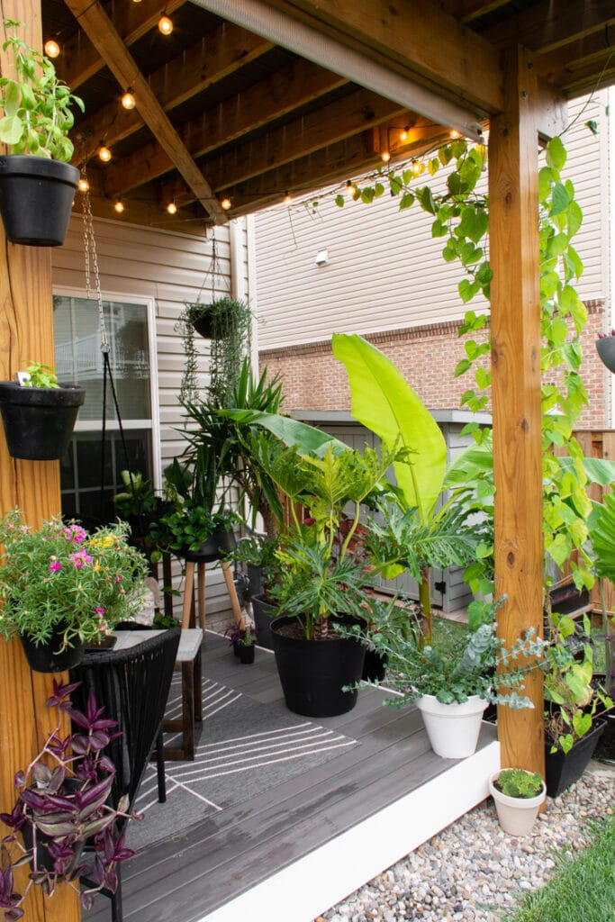 Beautiful outdoor townhouse deck with plants and rock landscaping