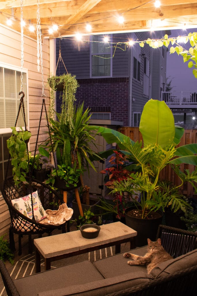 beautiful small patio with plants