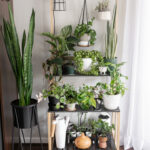 DIY Tiered Plant Stand: Make Space for More Plants!