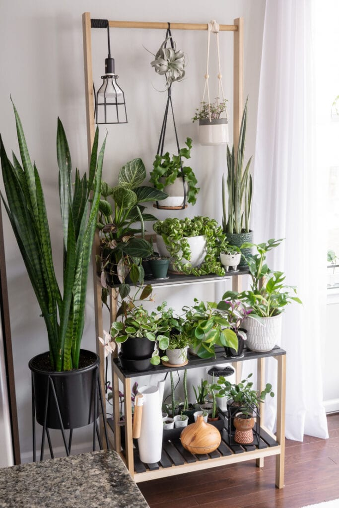 DIY tiered plant stand with room for hanging plants