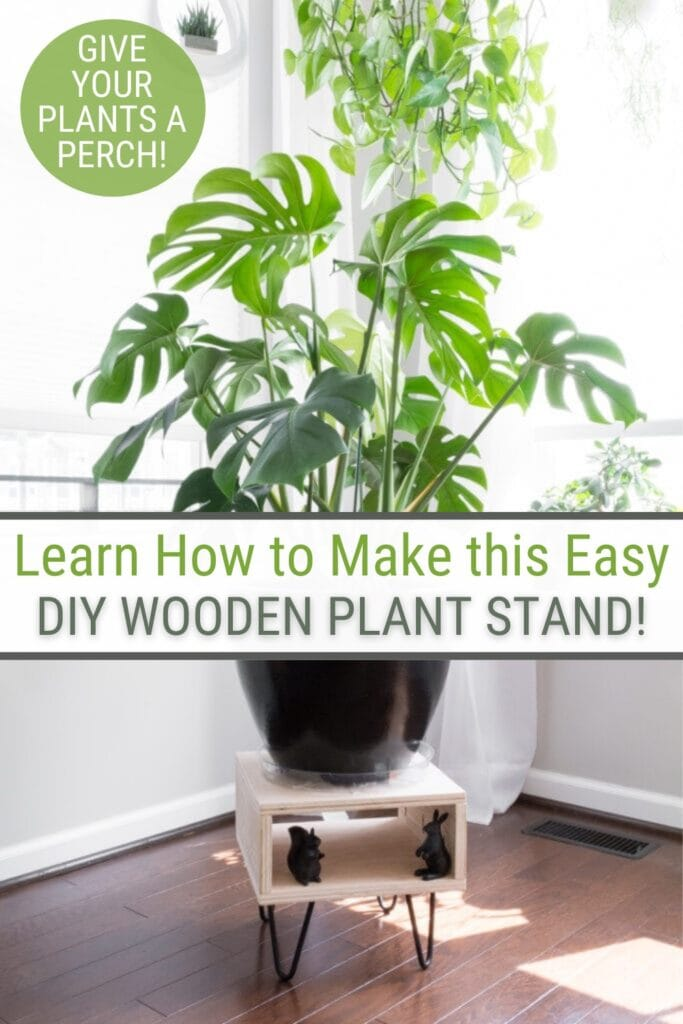 Image of potted plant on plant stand with text Learn How to Make this easy DIY Wooden Plant Stand!