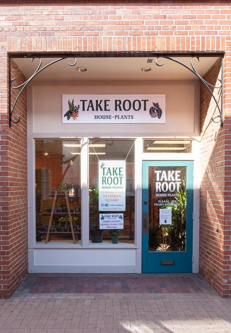 Take Root Houseplants Downtown