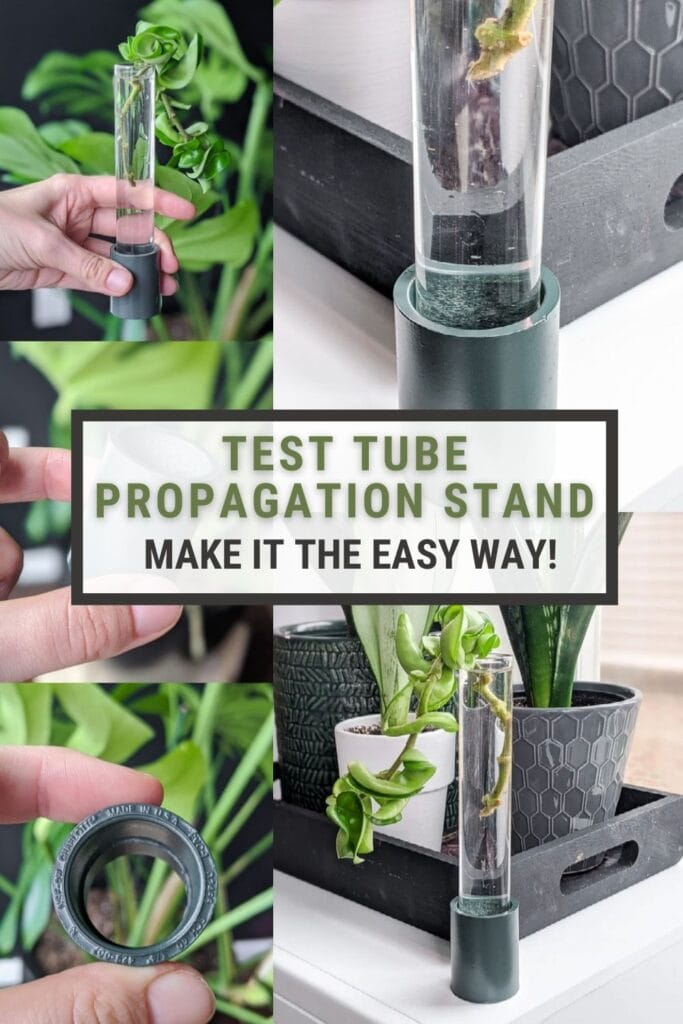 image collage of test tube propagation stand with text Test Tube propagation stand make it the easy way!