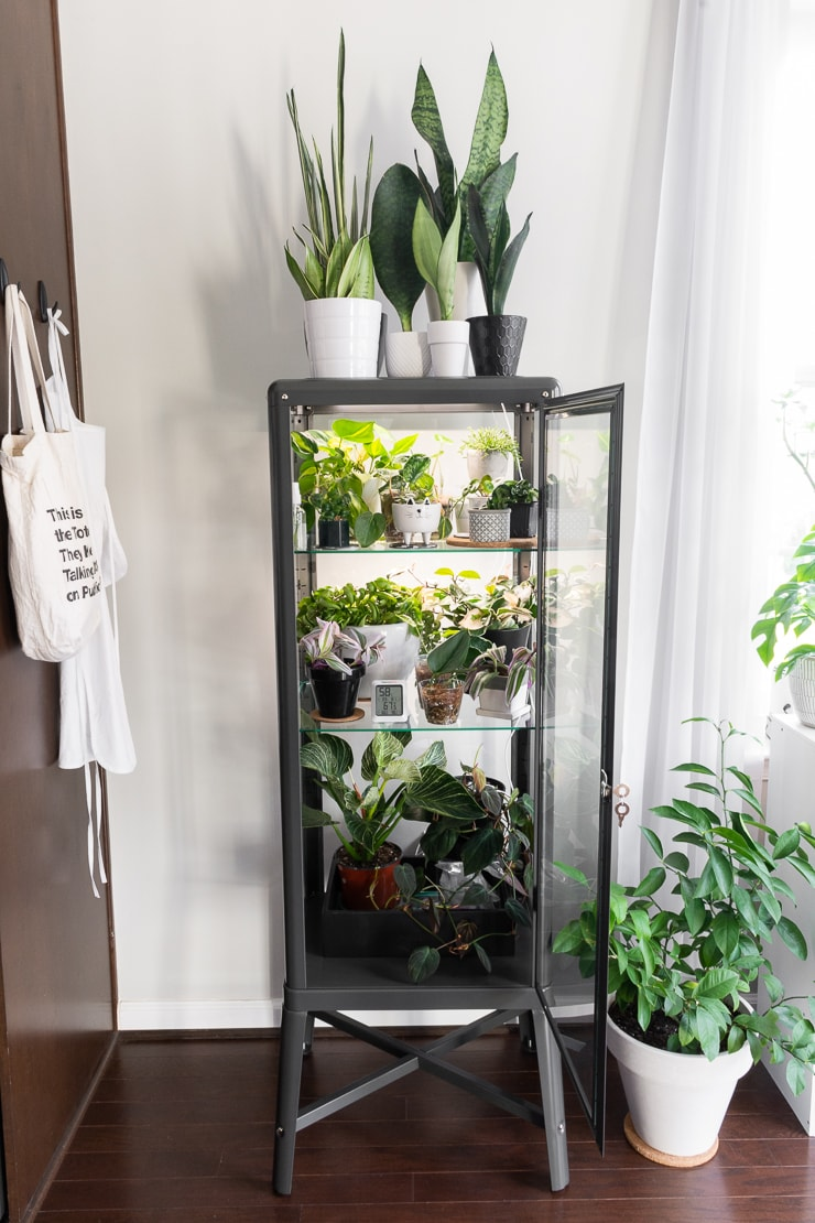 How To Hack An Ikea Glass Cabinet To Make A Greenhouse