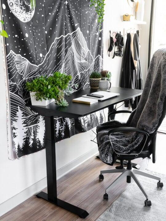 FlexiSpot electric standing desk review