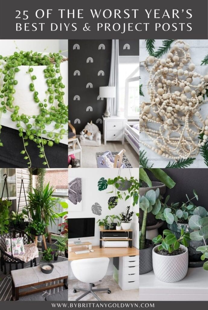 25 of My Most Popular DIYs and Plant Care Posts