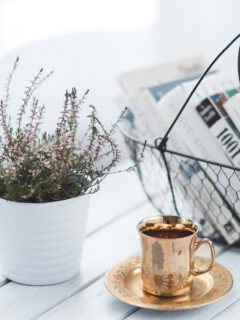 beautiful teacup and plant on a table