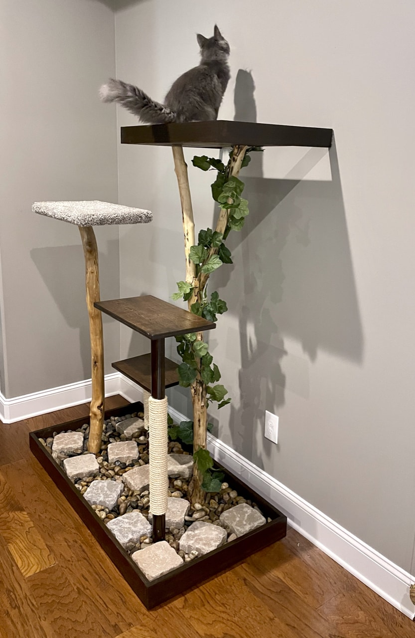 finished DIY cat tree using real branches