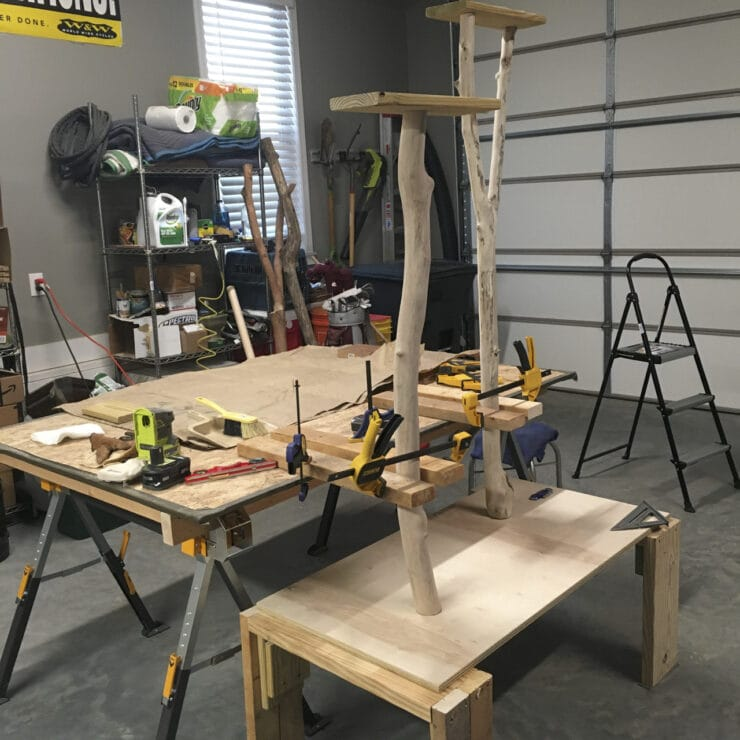 building a DIY cat tree using real branches