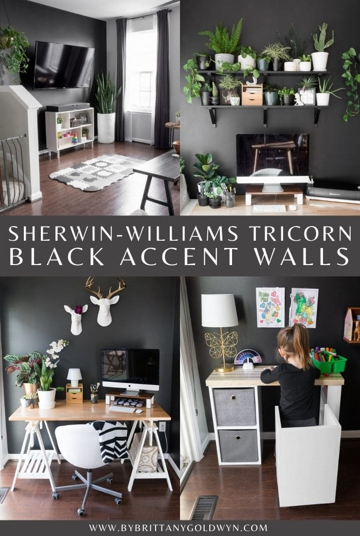 Tricorn Black accent walls in our home