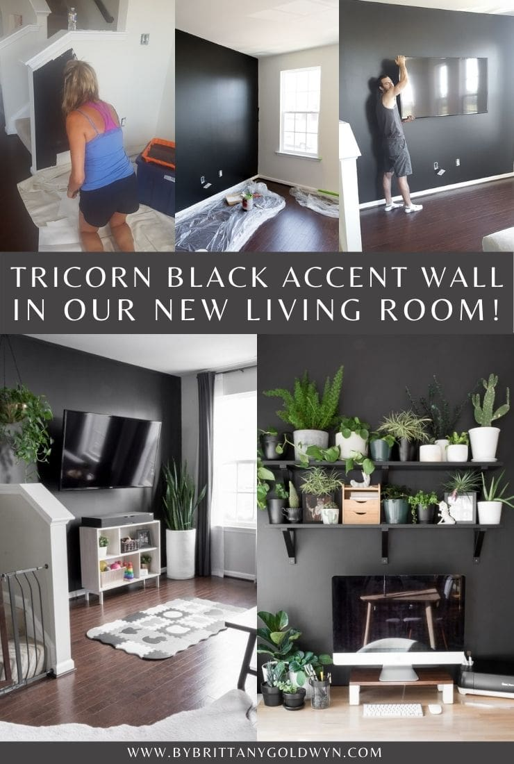 Tricorn Black wall in a living room