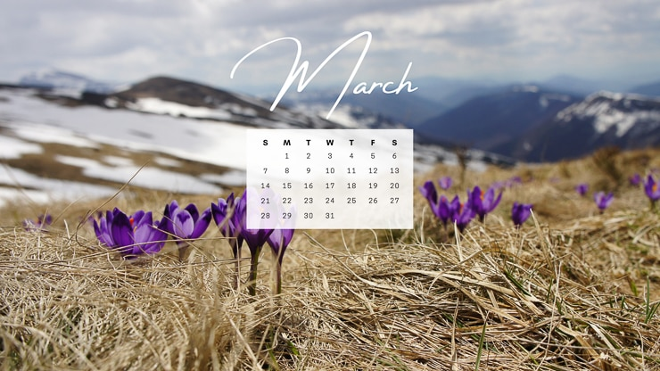 image of purple flowers in a field with snow and a March 2021 calendar