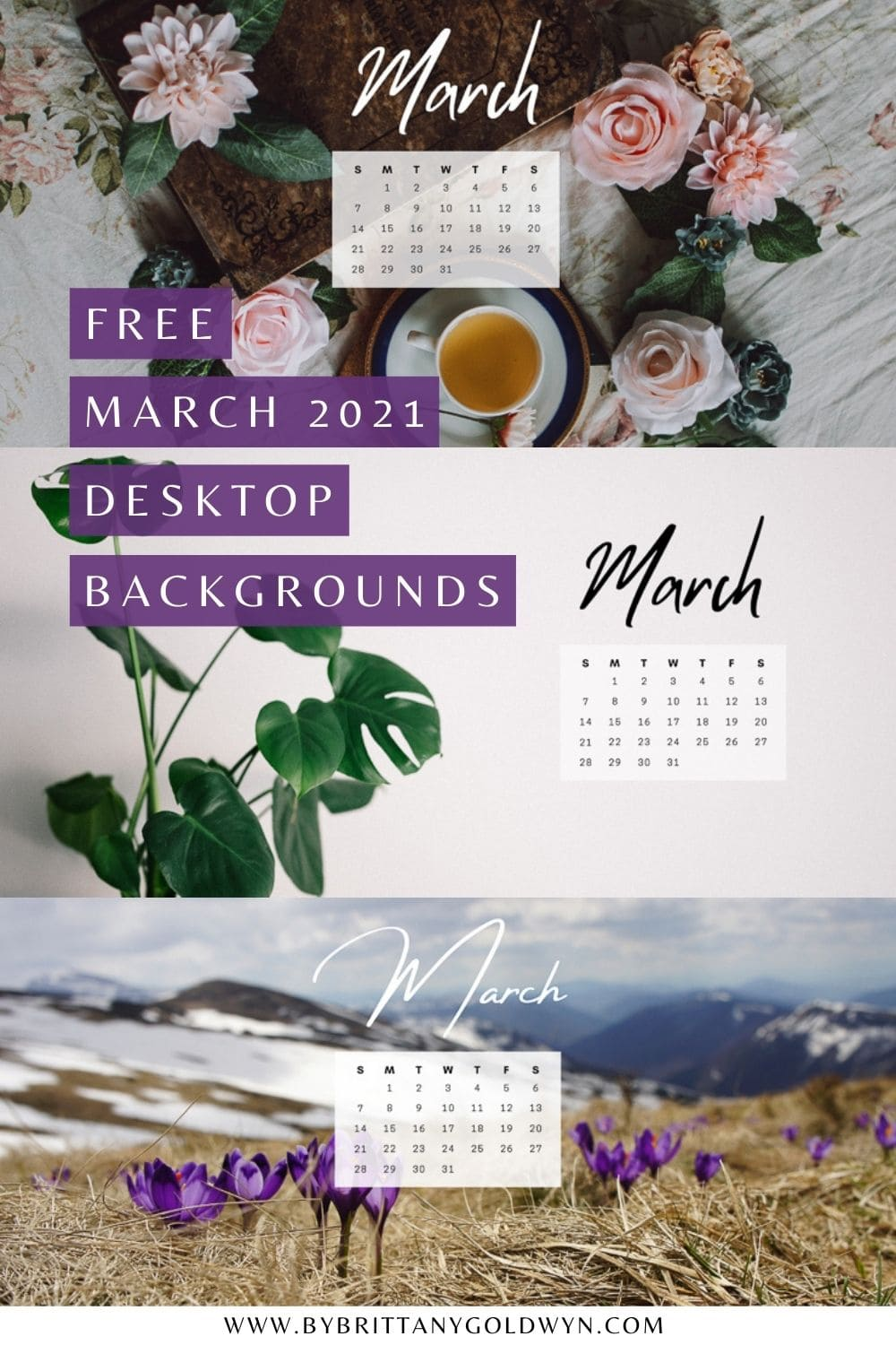 pinnable graphic with a collage of images that says free March 2021 desktop backgrounds