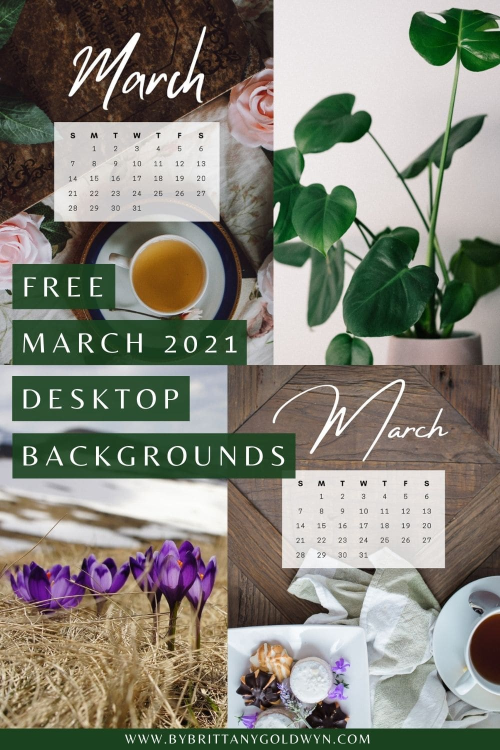 My 9 gorgeous free January 2021 desktop backgrounds come in two different monitor sizes and include calendars—download instantly!