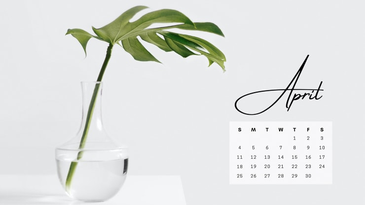 April 2021 computer desktop background with a monstera leaf