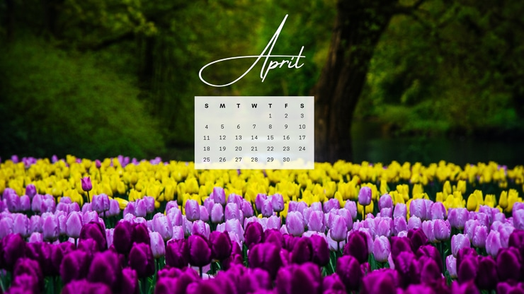 April 2021 computer desktop background with flowers in a field