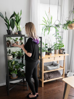 Ikea greenhouse cabinet with strip grow lights