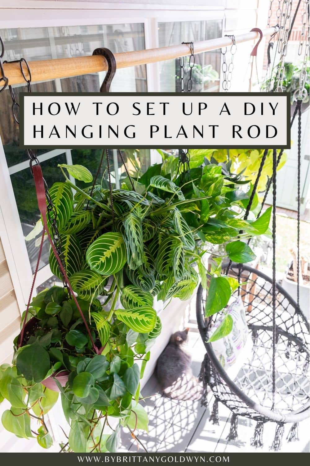 pinnable graphic with a photo of hanging plants and text about how to set up a DIY hanging plant rod