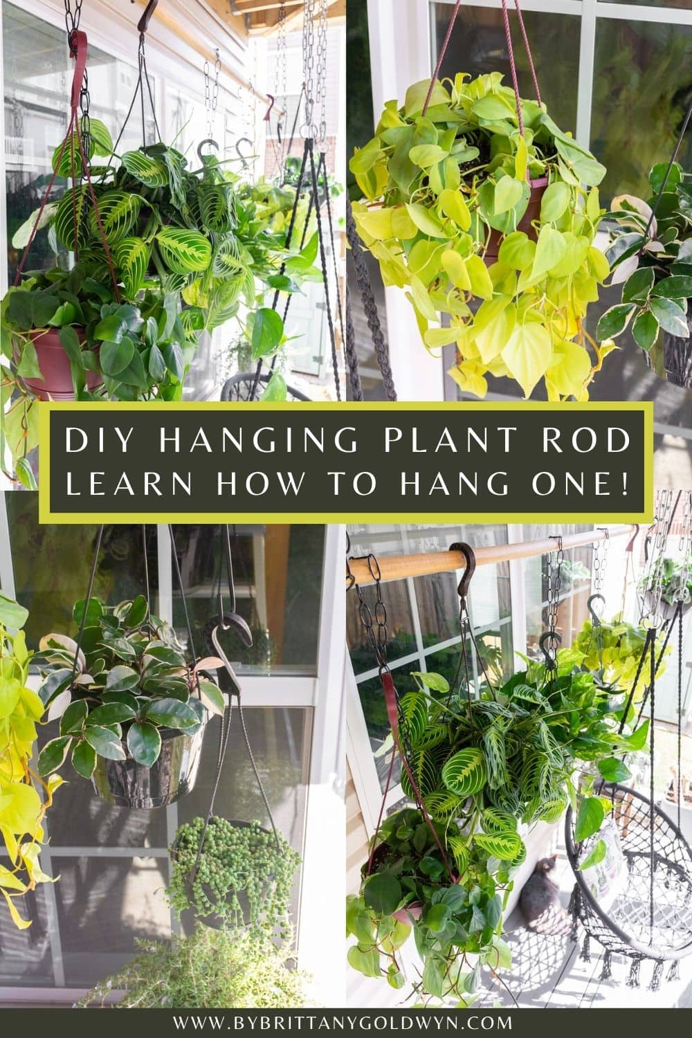 pinnable graphic with photos of hanging plants and text about how to set up a DIY hanging plant rod