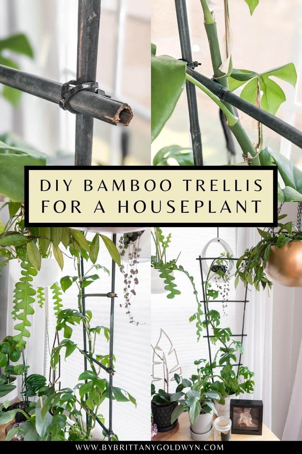 image collage of a DIY bamboo houseplant trellis with text overlay about how to make one
