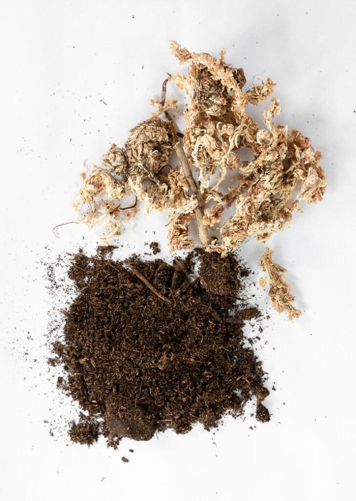 sphagnum moss vs. peat moss