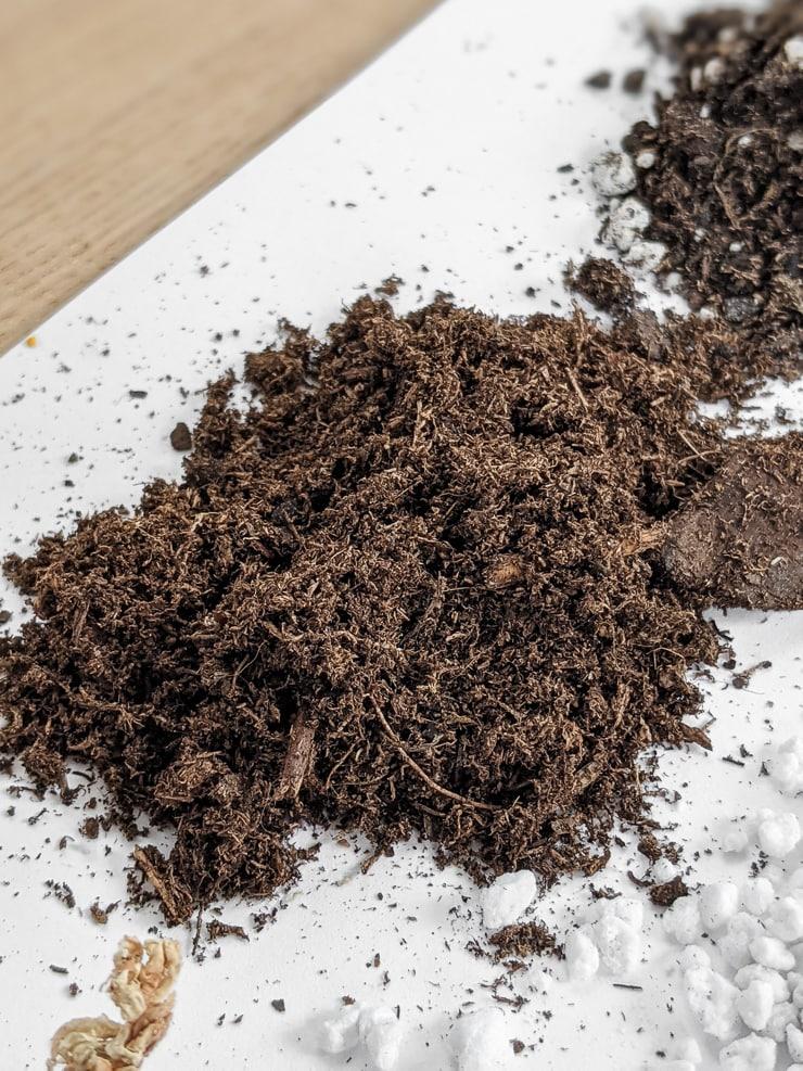 peat moss in a table