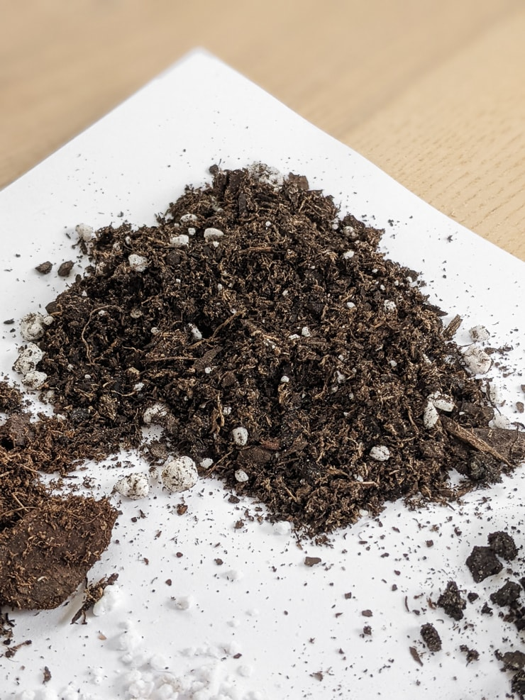indoor potting soil on a table