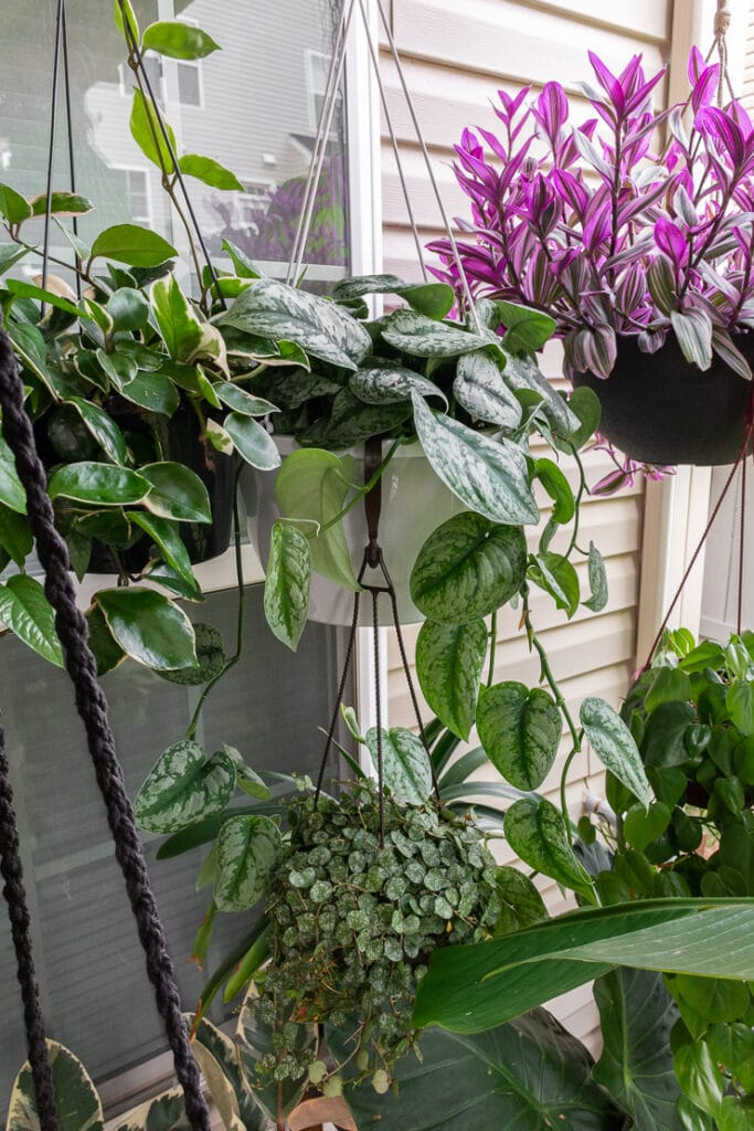 beautiful small townhouse patio decorating ideas with hanging plants