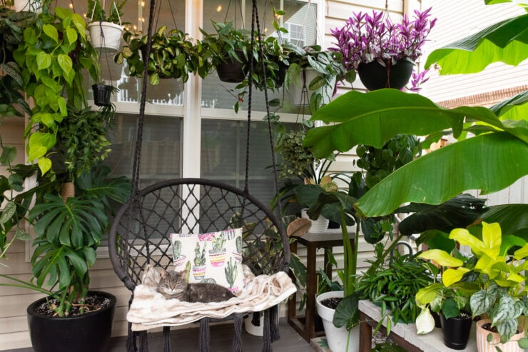 beautiful small townhouse patio decorating ideas with plants