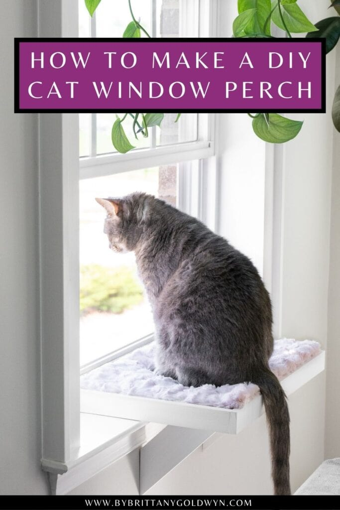 pinnable graphic about how to make a DIY cat window perch including an image and text overlay