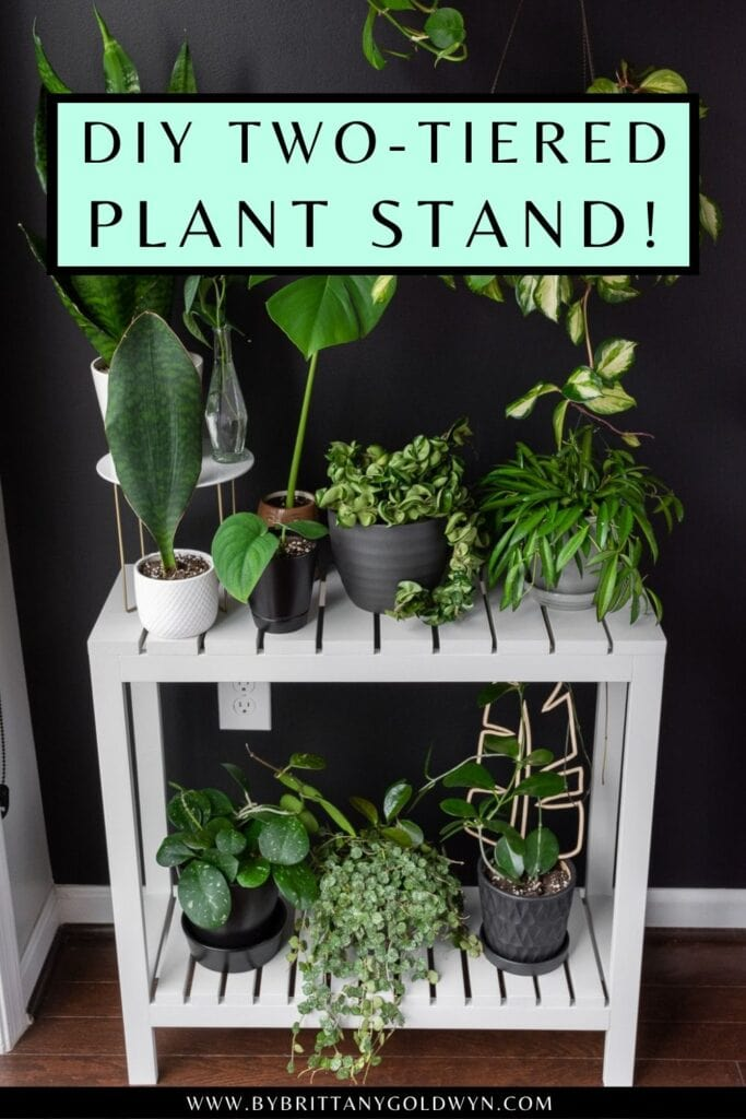 pinnable graphic about DIY indoor plant stand plans with an image and text overlay