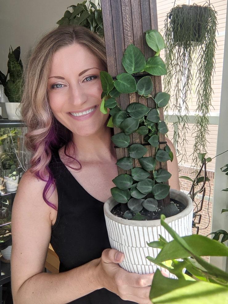woman holding a gorgeous shingle plant